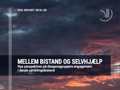 Nye perspektiver på diasporagruppers engagement i dansk udviklingsbistand