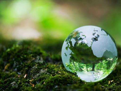 grøn verden